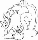 Coloring Fall Pumpkins Pumpkin Printable Patterns Gourd Applique Squash Templates Beccy Place Autumn Embroidery Gourds Sheet Leaves November Sheets Template sketch template