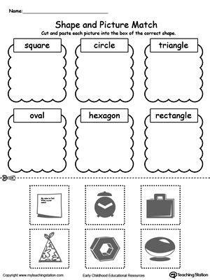 sorting categorizing worksheets images