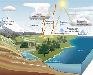 Frozen Water Diagram