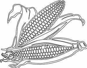 clipartist.net » Clip Art » corn SVG