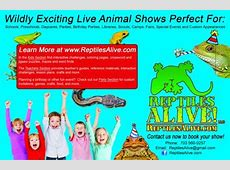 Northside Branch Library Reptiles Alive Show Reptiles Alive