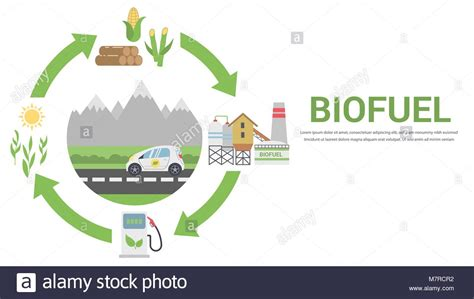 Carbon Cycle Illustration Stock Photos Carbon Cycle