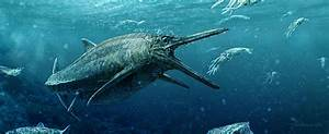 Jurassic 'Sea Monster' Emerges From Scottish Loch