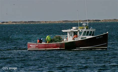 Destination Crab Boat Recovery by Cape Cod Fishermen Hunt For Ghost Gear New