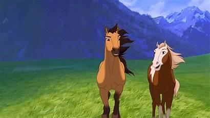 Spirit Stallion Cimarron Horse Ago Years Dreamworks