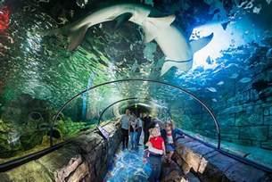 sea san diego aquarium reviews tours map