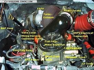 Sensor Diagram