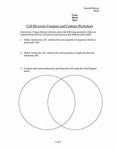 Comparing Eukaryotic And Prokaryotic Cells Venn Diagram