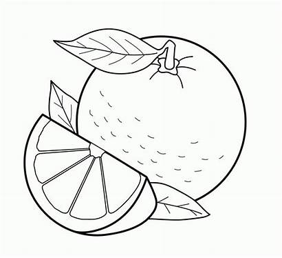 Coloring Fruit Pages Orange Printable
