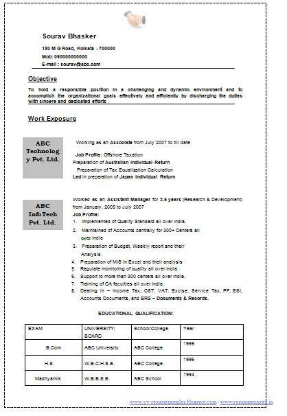 professional curriculum vitae resume template