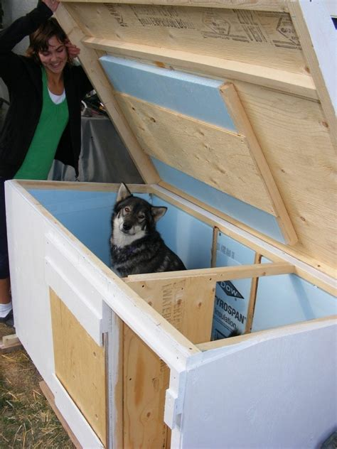 insulated dog house plans  large dogs  unique dog house plans insulated homes zone