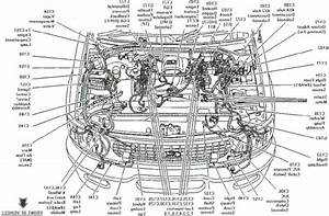 Ford Focus St Engine Diagram In 2020