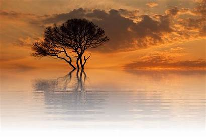 Sun Sunset Summer Nature Pixabay Dusk Scenic