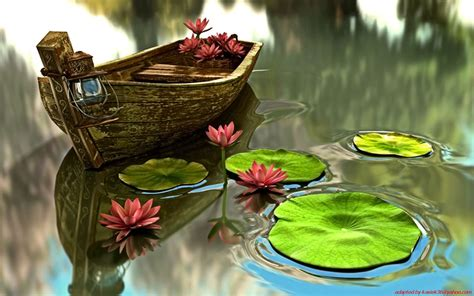Lily Pads For Boats by Nature Boats Vehicles Lily Pads Water Lilies 1680x1050