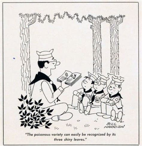 35 best Scouting Cartoons images on Pinterest