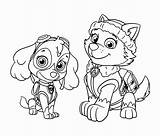 Paw Patrol Coloring Pages Zuma Skye Colo Printable Getcolorings sketch template