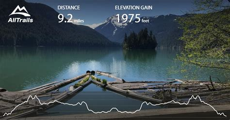 packwood lake washington trail alltrails map