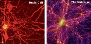 Physicists Find Evidence That The Universe Is A Giant Brain!