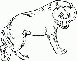 HD Wallpapers Wolf Girl Coloring Pages Get Free High Quality