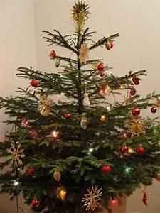 Lichterkette Weihnachtsbaum Anbringen : weihnachtsbaum frisch halten der wohnsinn ~ Markanthonyermac.com Haus und Dekorationen