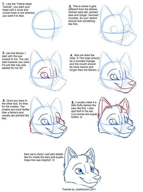 draw canines head  justautumn  deviantart