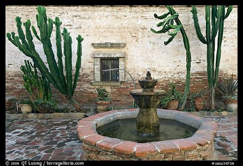 picture photo sacred garden with and cacti san