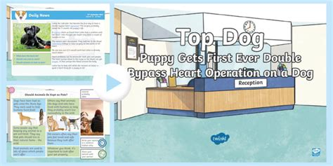 * New * Lks2 Dog Heart Surgery Daily News Powerpoint Pets