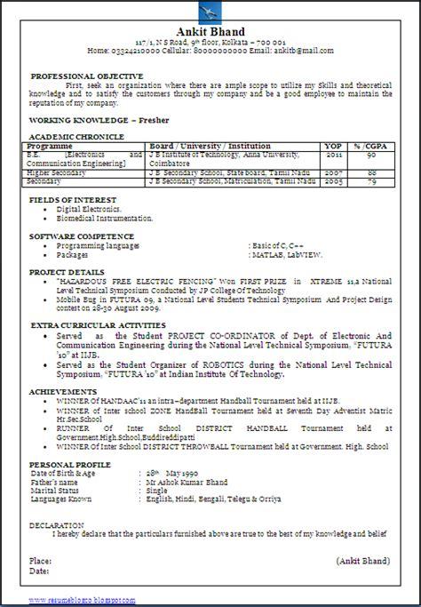resume blog  beautiful  page resume cv sample