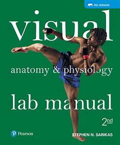 Visual Anatomy  U0026 Physiology Lab Manual Pig Version  Ebook
