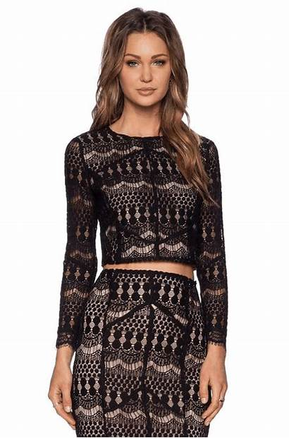 Lace Wantering Cropped Bardot Tops Looks Salvo