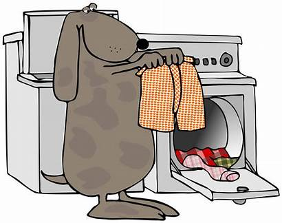 Laundry Clothes Dog Shake Clipart Doing Drying