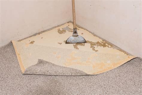 teppichboden klebereste entfernen geklebten teppichboden entfernen geklebten teppichboden entfernen tipps boden teppich fussboden