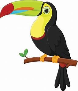 Cute Toucan Bird Cartoon premium clipart - ClipartLogo com
