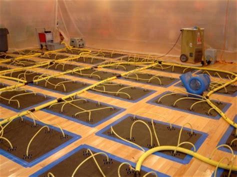 carpet cleaners long island ny hardwood floor drying