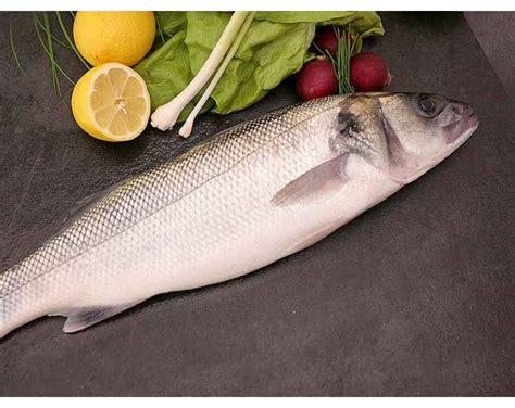bar sauvage acheter du poisson frais  domicile