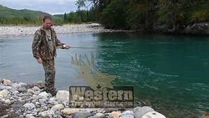 WESTERN CANADA BIG GAME HUNTING - Western Trophy ...