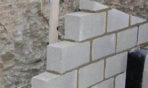 Cout Mur Parpaing : mur de cl ture en parpaing une solution la fois s curisante et conomique blog mister ~ Dode.kayakingforconservation.com Idées de Décoration