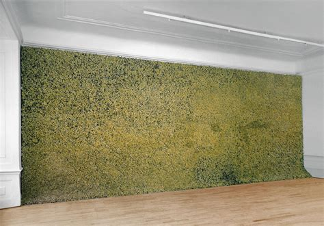 moss wall artwork studio olafur eliasson