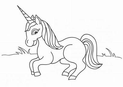 Unicorn Coloring Pages Magical Scribblefun