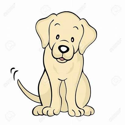 Clipart Labrador Dog Lab Yellow Chocolate Vector