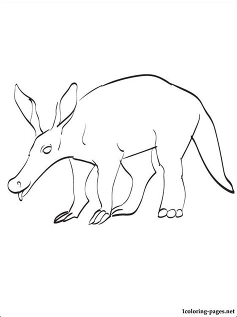 aardvark coloring page coloring pages