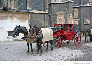 Tour Plan Format Horses And Horse Coach Picture