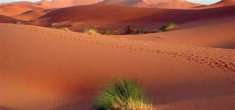travel tips  algeria      trip