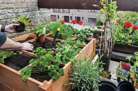 Intensive Gardening