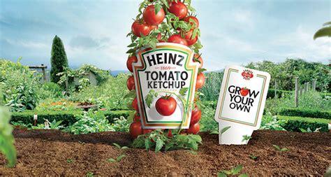Kraft Heinz encourages kids to grow their own - Scottish ...