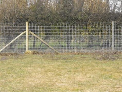 how to keep rabbits out of your garden infobarrel