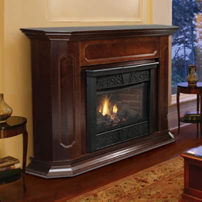 monessen cfx chesapeake vent  fireplace system