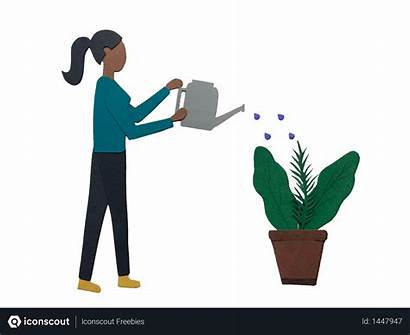 Watering Illustration Plant Water Using Vector