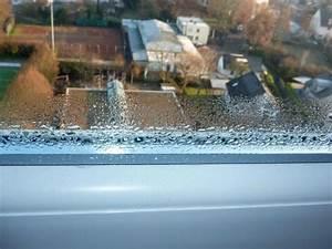 Feuchtigkeit Am Fenster : luftfeuchtigkeitsmessung fred rohleder gutachter f r schimmelsch den ~ Watch28wear.com Haus und Dekorationen