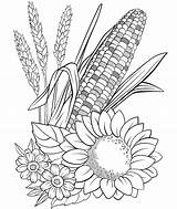 Coloring Pages Crayola Plants Desert Corn Flowers Thanksgiving Scene Printable Flower Drawing Fall Turkey Colouring Adult Mindfullness Colourings Sheet Adults sketch template